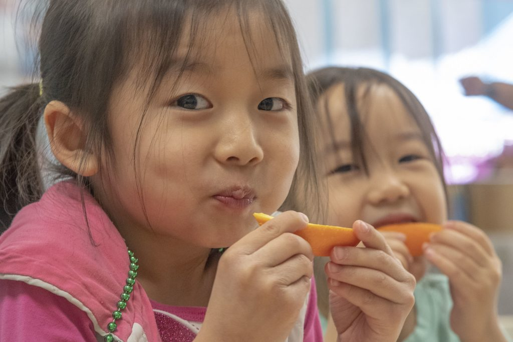 American Families Plan: Changes to school lunch program to support more kids | image: USDA
